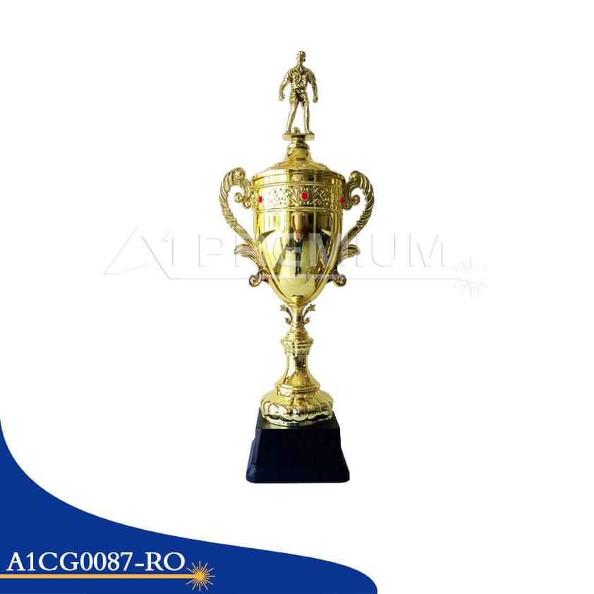 A1CG0087-RO