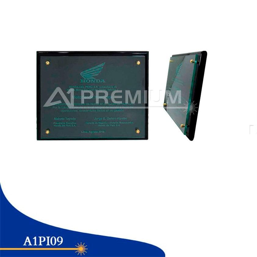 Placas Institucionales-A1PI09