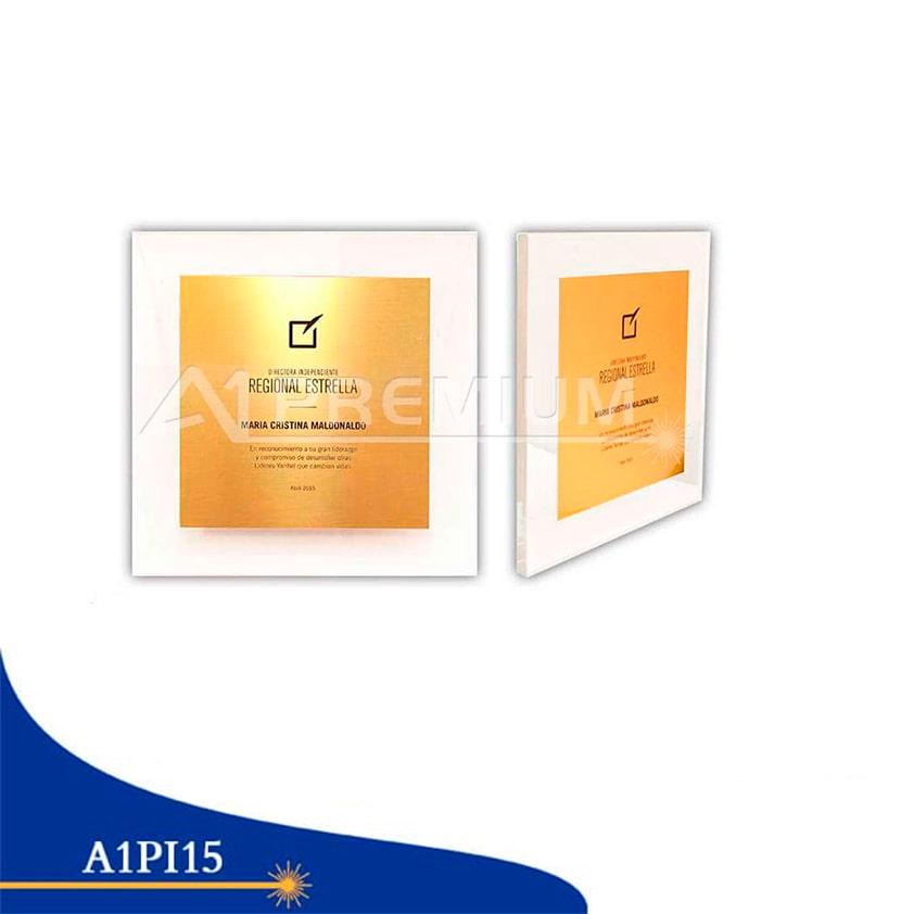 Placas Institucionales-A1PI15