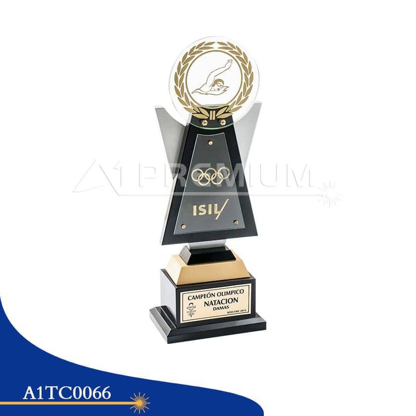A1TC0066