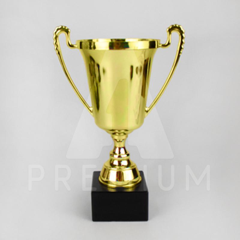 A1CG0102