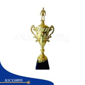 A1CG0093