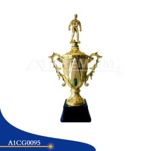 A1CG0095