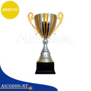 A1CG0101-XT