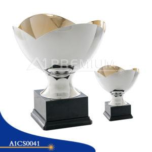 A1CS0041