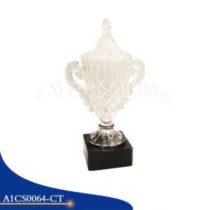 A1CS0064-CT