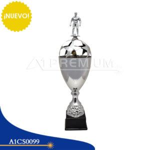 A1CS0099