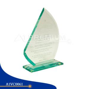 A1VC0061