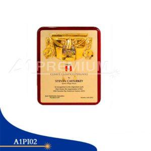 Placas Institucionales-A1PI02