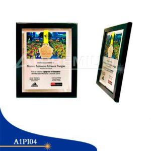 Placas Institucionales-A1PI04