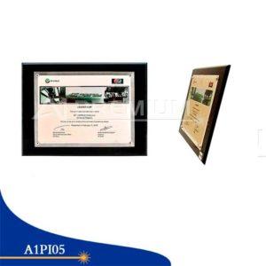 Placas Institucionales-A1PI05
