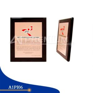 Placas Institucionales-A1PI06