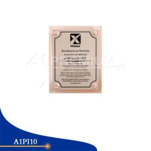 Placas Institucionales-A1PI10