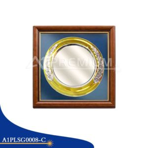 A1PLSG0008-C