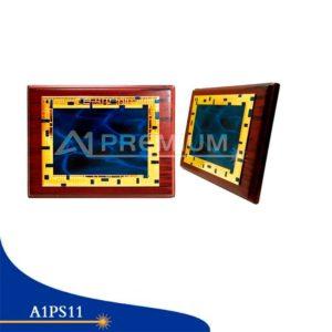 Placas Standar-A1PS11