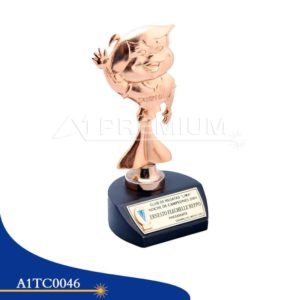 A1TC0046