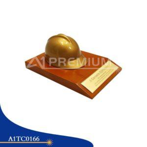 A1TC0166