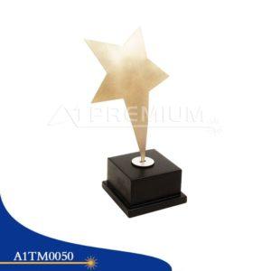 A1TM0050