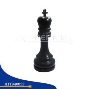 A1TM0055