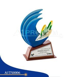 A1TS0006