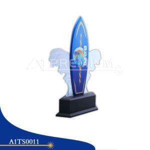 A1TS0011