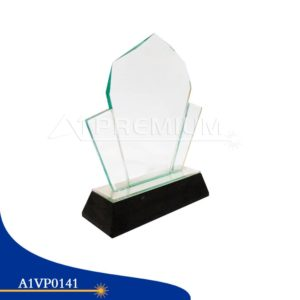 A1VP0141