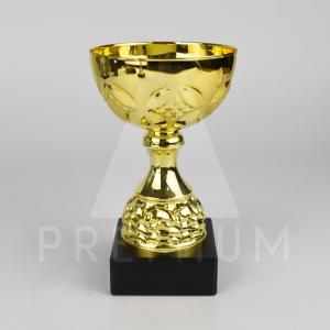 A1CG0104
