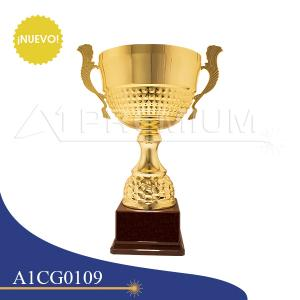 A1CG0109