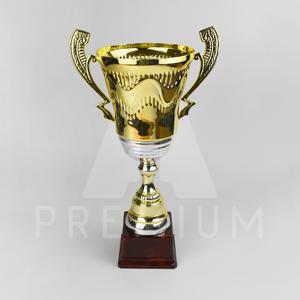 A1CG0110