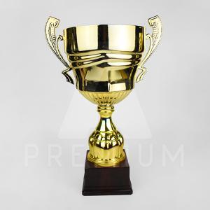 A1CG0111