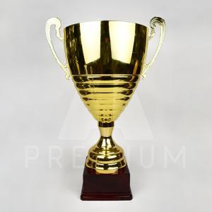 A1CG0113