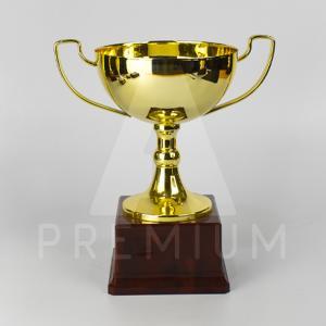 A1CG0117