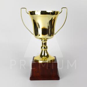A1CG0118-A