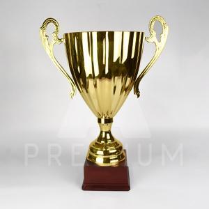 A1CG0120