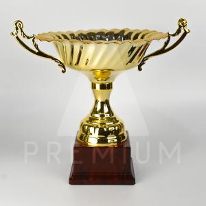 A1CG0123