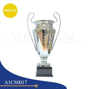 A1CS0017