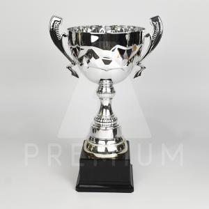 A1CS0106