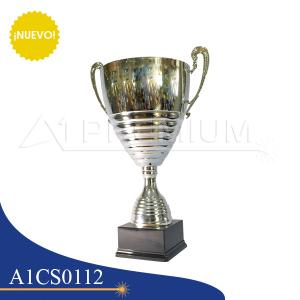 A1CS0112