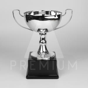 A1CS0118