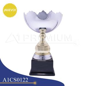 A1CS0122